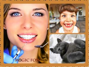 Сонник зубы выпадают без крови и боли