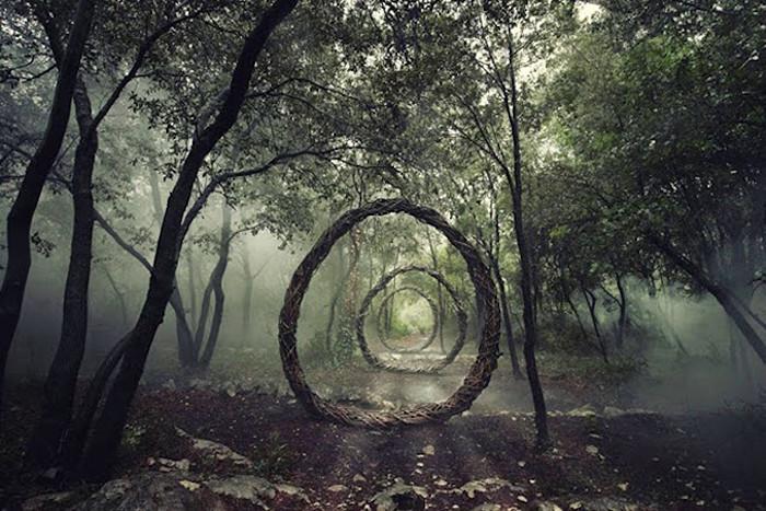 лес мистика