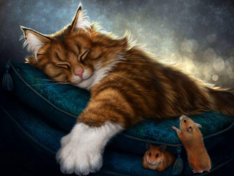 Контрмагия во сне - магия обратного удара